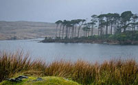 Connemara lake view